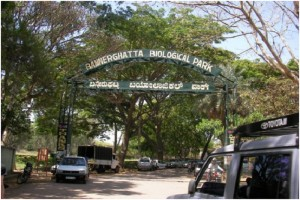 bannerghatta-biological-park-bangalore-weekend-getaway