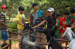 kids-weekend-packages-bangalore